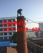 紹興煙囪專業拆除公司圖片
