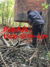烟囱拆除公司(南充地区)包验收图片