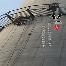 梅州烟囱防护爬梯制作安装公司施工队伍图片