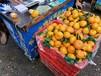 水果批發市場水很深