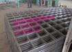 钢筋建筑网镀锌地暖钢丝网展架上墙网格养殖浸塑网