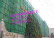 建筑安全网优质防护网边坡防护网护山网防石网厂家专卖