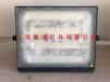 飛利浦BVP171/30W明暉LED投光燈