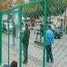 防盗门窗美格网/浸塑草绿色菱形美格网/养狗美格网笼子