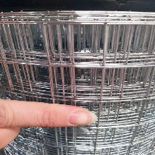 铄凯生产碰焊网,镀锌碰焊网