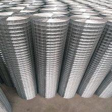 铄凯厂家专业生产电焊网,改拔丝电焊网