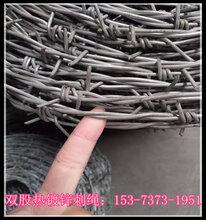 安平专业生产高速刺丝网,包塑刺铁丝厂家