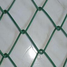 厂家热卖菱形勾花网,镀锌菱形网,经济实惠图片