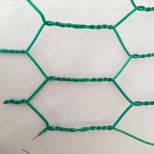 厂家直销养殖大六角铁丝网,养殖拧花网,经济实惠