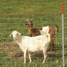 热卖养牛铁丝网,拦牛羊隔离网,价格便宜
