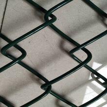 供应PVC包塑勾花网,运动场勾花护栏,价格实惠