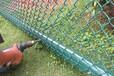 生产安装球场铁丝网,篮球场护栏网,价格实惠
