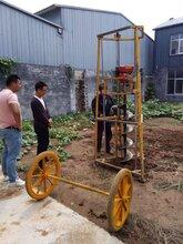 扬方科技销售各种型号挖坑机