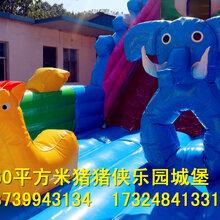 郑州厂家直销猪猪侠乐园充气蹦床大滑梯大型充气城堡多少钱图片