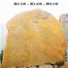 岳阳市景观石,植物园风景石,湖南刻字黄蜡石