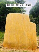 百年后-人们遵义市-既然是这样讨论大型黄蜡石