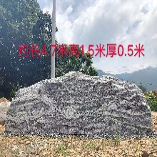 兴化大型泰山石原石兴化招牌泰山石