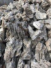 重庆盆景装饰小块青龙石盆景假山装饰