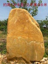 大冶园林景观石大冶大型景观石大冶黄蜡石景观石