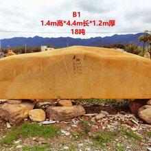 广水大型观赏标志石产地园林石黄蜡石
