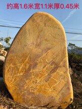 天津现货绿化黄蜡石景观石天然石厂家