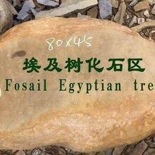深圳景观石黄蜡石源产地