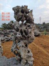 乐亭县太湖石造景石价格