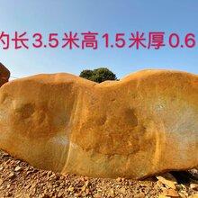 彭州市主题公园黄蜡石门牌石