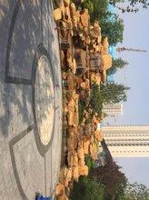 达川市公园驳岸石黄蜡石点缀