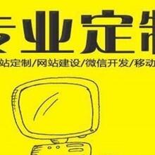 东丽专业建站公司,利津路网站制作公司,圣辉友联建站