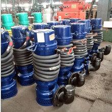 化工廠用防爆潛水泵WQB10-20-1.5三相無堵塞排污泵小型圖片