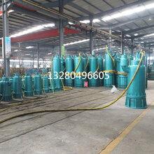 安泰防爆潜水泵BQS污水排沙泵BQS潜污泵安泰排沙泵图片
