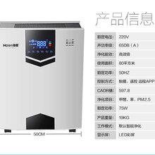 宁波海恩空气净化器