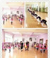 江夏银河之星舞蹈艺体培训中心暑期舞蹈培训火热报名中