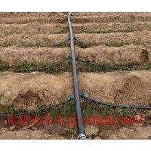 滴灌厂家直销九龙坡葡萄专用优质16mm滴灌管质量上乘