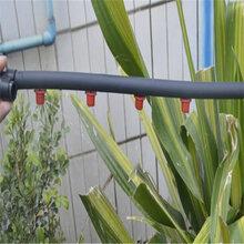 广安厂家直销各种规格节水灌溉滴灌管件pe20农田园林灌溉滴灌管