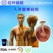 浙江液體硅膠硅膠最新價格