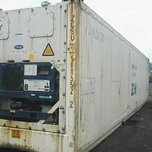 集装箱冷冻柜厂家,大金冷冻集装箱厂家,凯利冷冻集装箱厂家图片