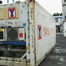 二手集装箱价格,二手冷冻冷藏集装箱介绍,二手集装箱改造图片