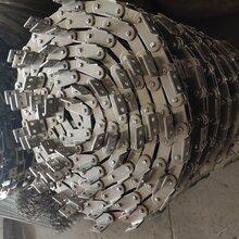 傳動鏈輪鏈條工業輸送鏈條鏈輪雙節距鏈條鏈輪圖片