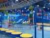 投资加盟水上乐园——需要考虑哪些方面水上乐园厂家儿童水上乐园设备