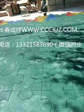 供应随州恩施幼儿园健身房橡胶地板人工草坪图片