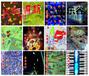 互动投影滑梯互动游戏淘气堡互动儿童乐园游戏地面互动整套