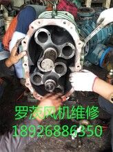 东莞罗茨风机维修公司