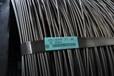 SAE1015宝钢线材,可订做小规格,也可定做盘条精线