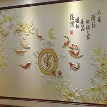 潍坊吊顶图案3D/5D背景墙批发价格图片