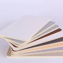 藝之家木飾面板,寧河環保竹木纖維集成墻板批發代理圖片