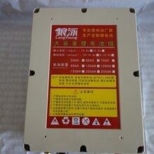 聚合物锂电池12v大容量,聚合物锂电池12v图片