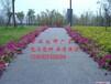 吴忠彩色透水混凝土路面地坪优质商家