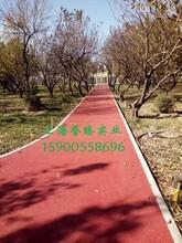 咸宁透水地坪/彩色透水混凝土新时代的路面产品图片